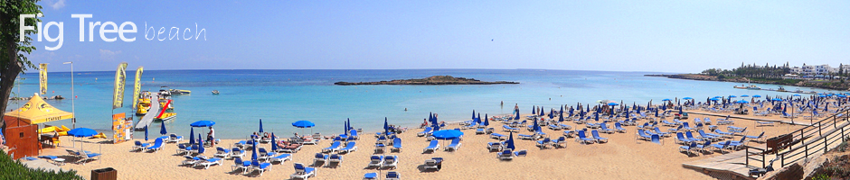 Cyprus beaches protaras fig tree beach